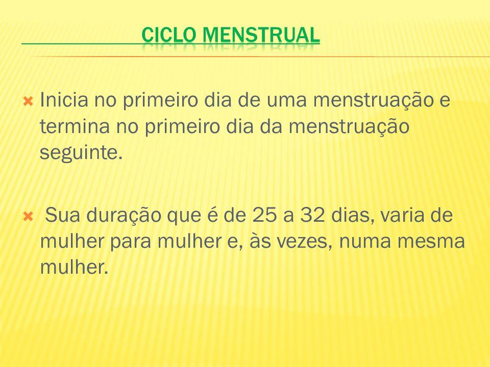 Inicia no primeiro dia de uma menstruação e termina no primeiro dia da menstruação seguinte. Sua duração que é de 25 a 32 dias, varia de mulher para m