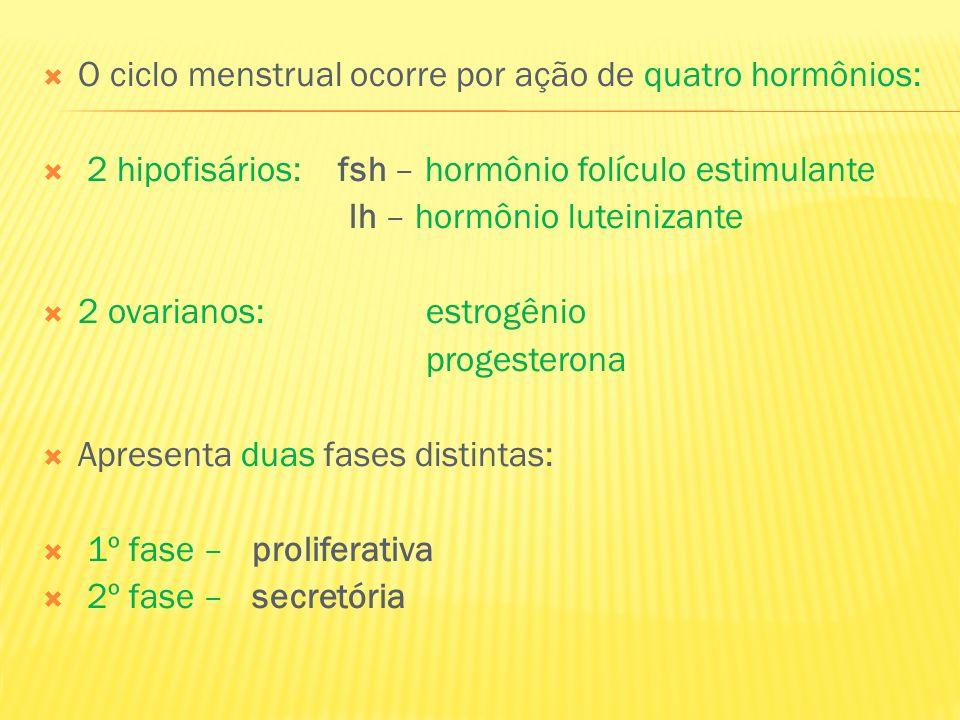 O ciclo menstrual ocorre por ação de quatro hormônios: 2 hipofisários: fsh – hormônio folículo estimulante lh – hormônio luteinizante 2 ovarianos: est