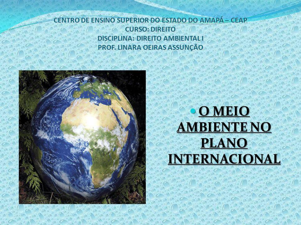 O MEIO AMBIENTE NO PLANO INTERNACIONAL 1.
