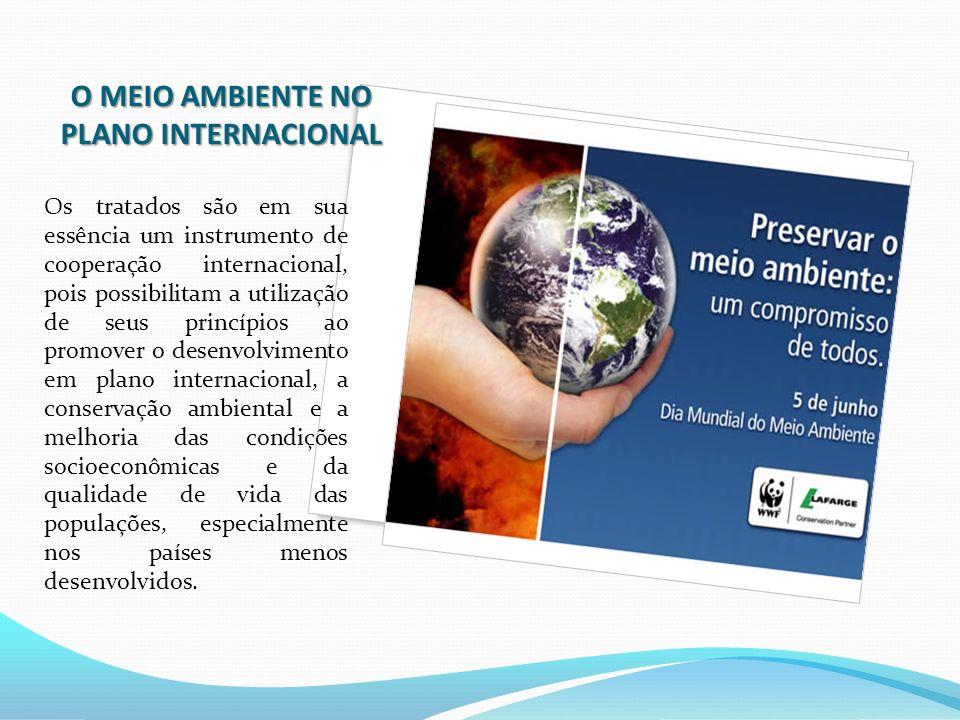 O MEIO AMBIENTE NO PLANO INTERNACIONAL Os tratados são em sua essência um instrumento de cooperação internacional, pois possibilitam a utilização de s