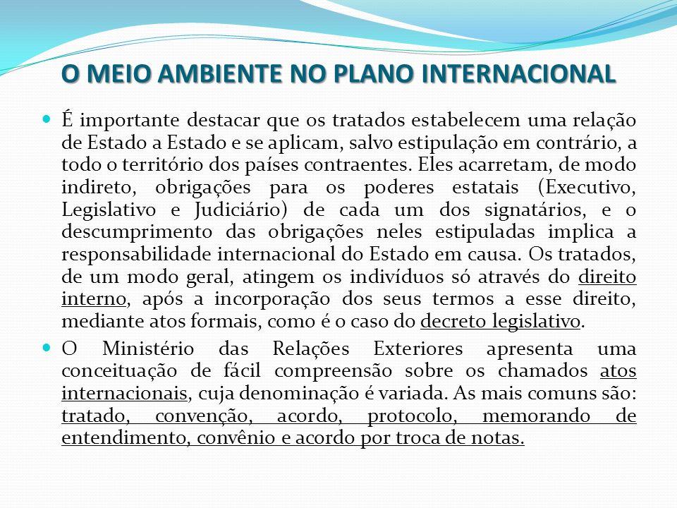 O MEIO AMBIENTE NO PLANO INTERNACIONAL É importante destacar que os tratados estabelecem uma relação de Estado a Estado e se aplicam, salvo estipulaçã