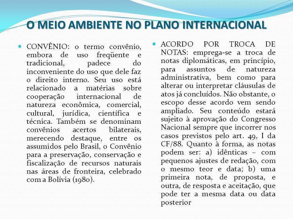 O MEIO AMBIENTE NO PLANO INTERNACIONAL Acordos internacionais em geral, como convenções, declarações, protocolos etc., podem ser denominados como tratados, sob uma ótica ampla do termo.
