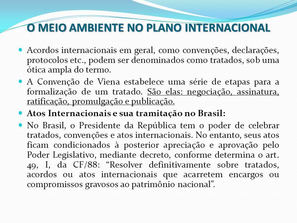 O MEIO AMBIENTE NO PLANO INTERNACIONAL O ato de cunho internacional é encaminhado para exame e aprovação, sucessivamente, da Câmara dos Deputados e do Senado.