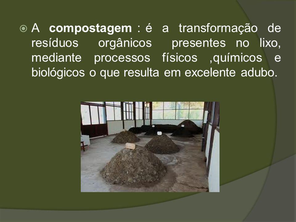 A compostagem : é a transformação de resíduos orgânicos presentes no lixo, mediante processos físicos,químicos e biológicos o que resulta em excelente