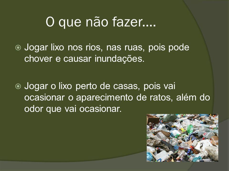 O que não fazer.... Jogar lixo nos rios, nas ruas, pois pode chover e causar inundações. Jogar o lixo perto de casas, pois vai ocasionar o apareciment