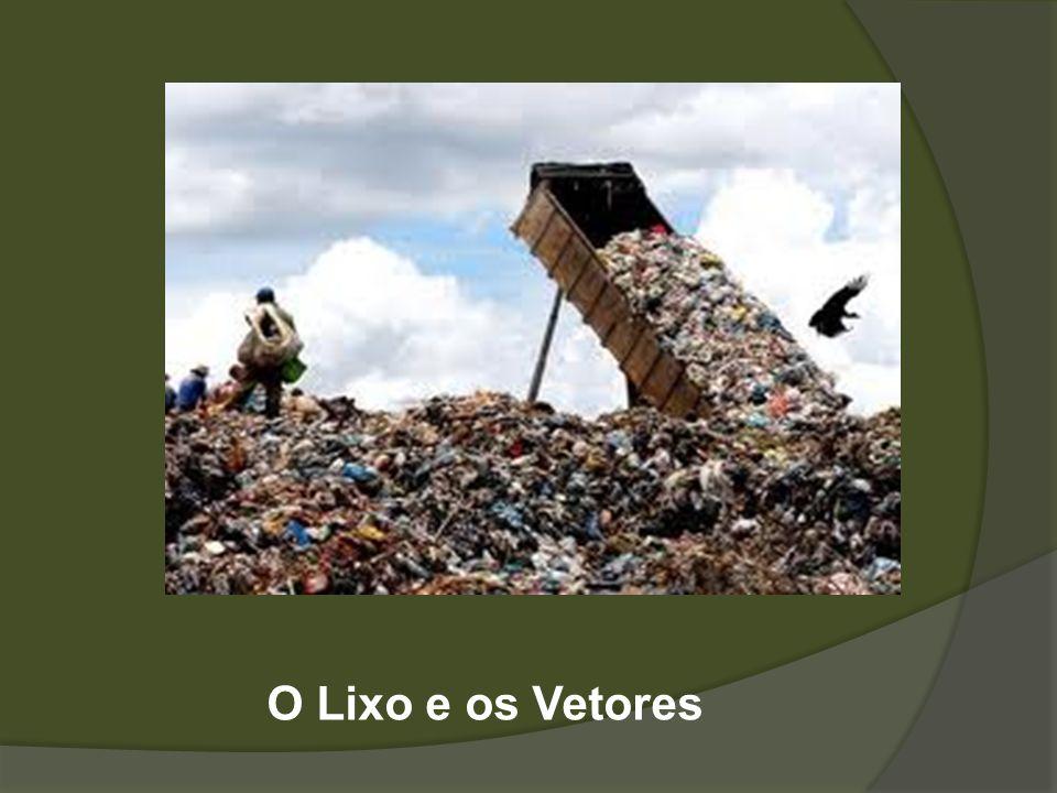 Como podemos nos livrar dos vetores associados ao lixo.