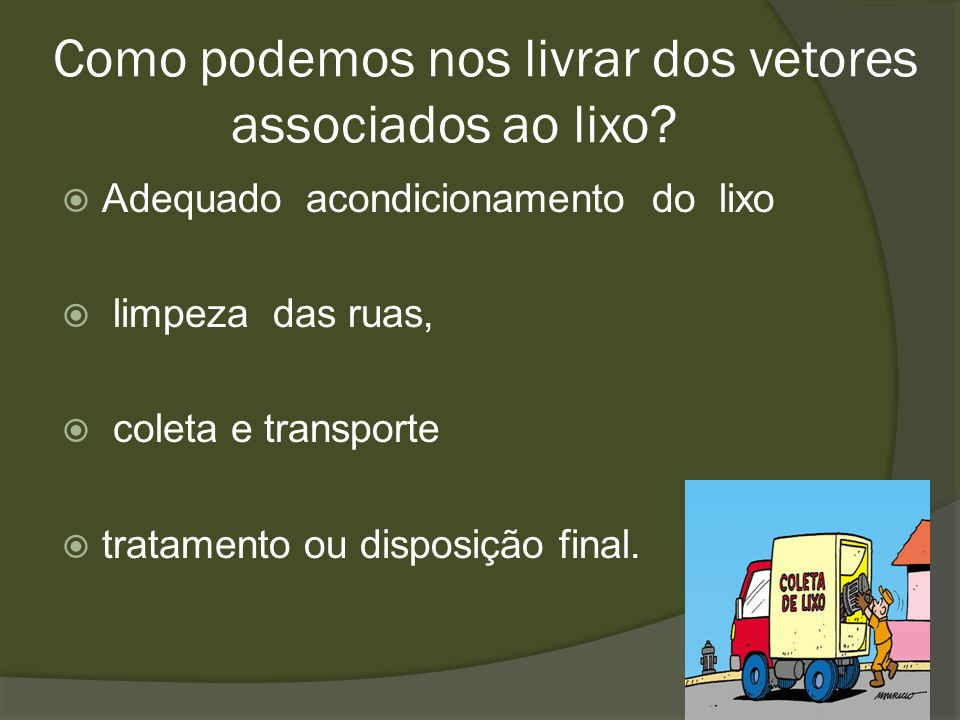 Como podemos nos livrar dos vetores associados ao lixo? Adequado acondicionamento do lixo limpeza das ruas, coleta e transporte tratamento ou disposiç