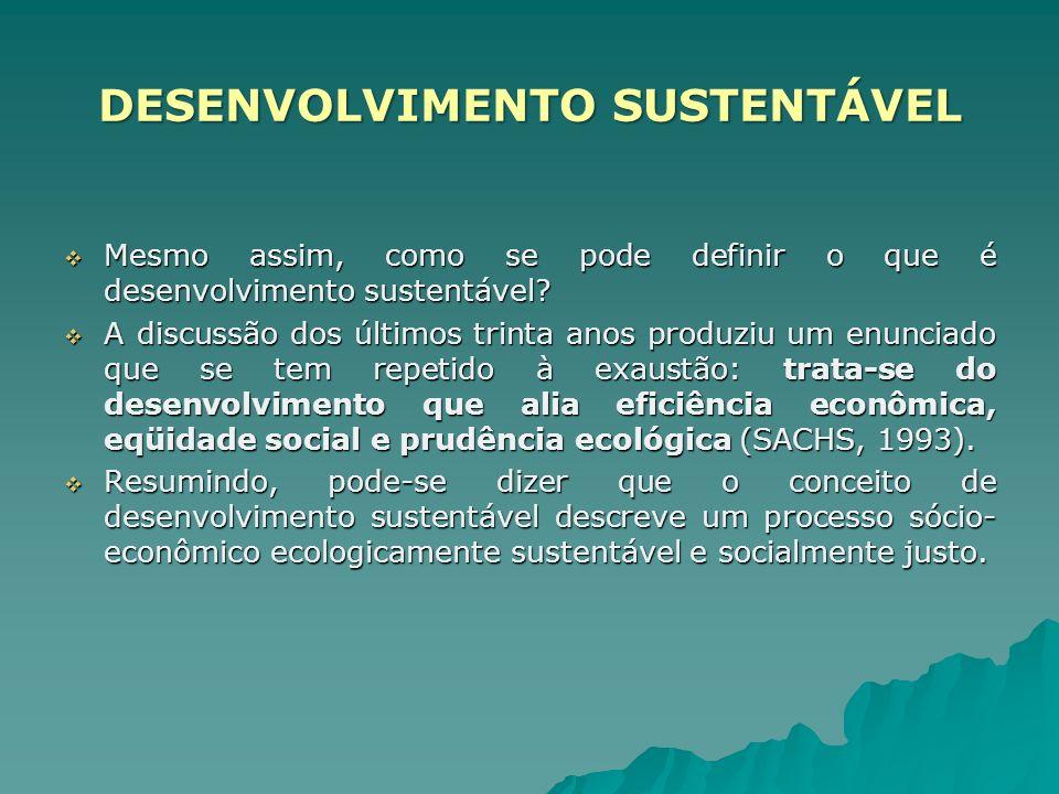 Mesmo assim, como se pode definir o que é desenvolvimento sustentável? Mesmo assim, como se pode definir o que é desenvolvimento sustentável? A discus