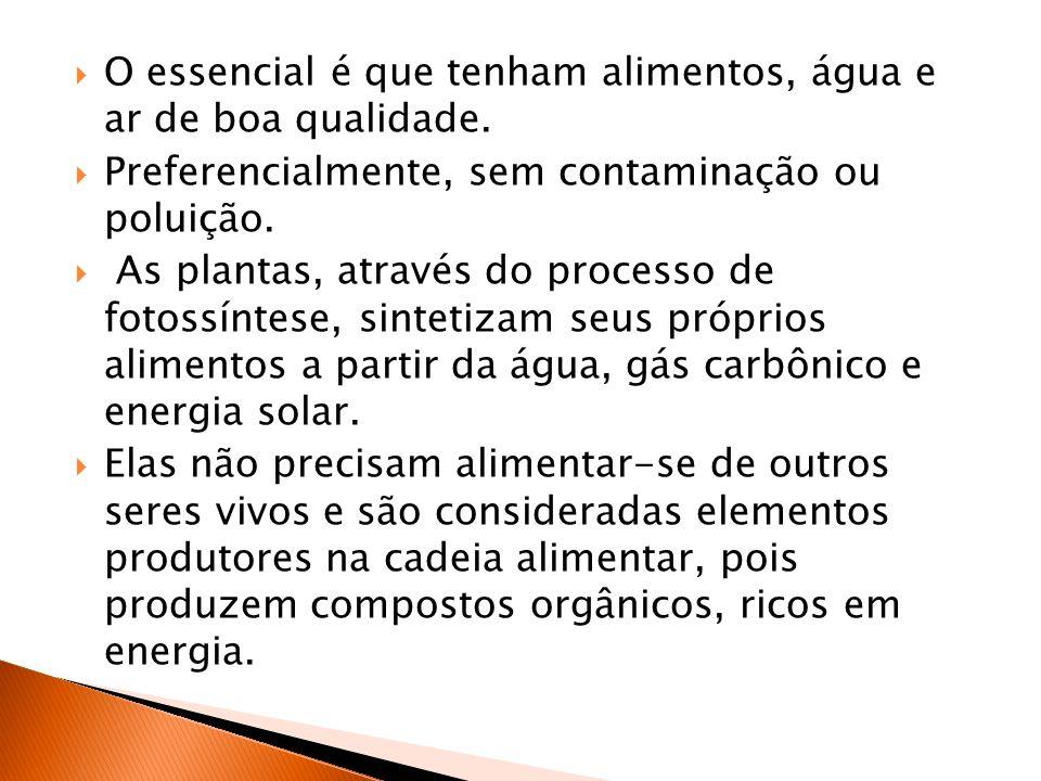 O essencial é que tenham alimentos, água e ar de boa qualidade. Preferencialmente, sem contaminação ou poluição. As plantas, através do processo de fo
