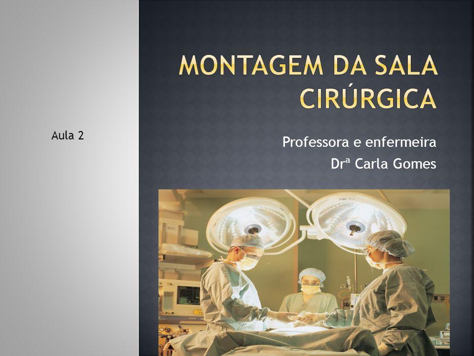 Professora e enfermeira Drª Carla Gomes Aula 2
