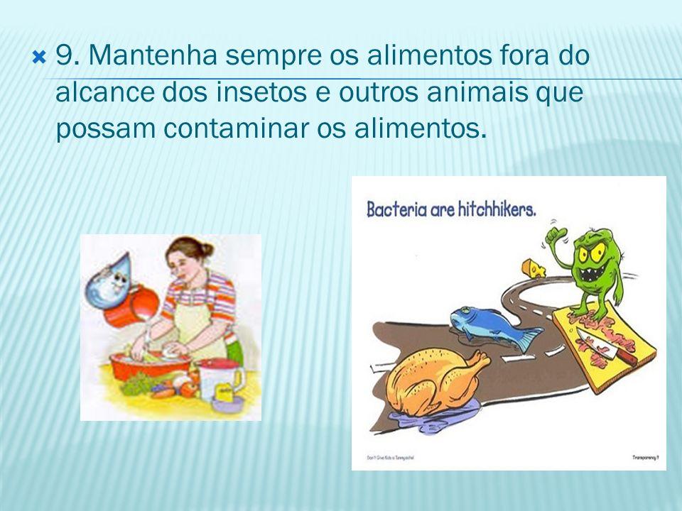9. Mantenha sempre os alimentos fora do alcance dos insetos e outros animais que possam contaminar os alimentos.