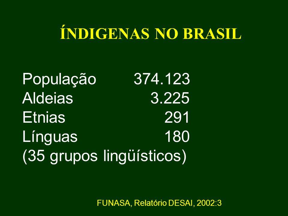 ÍNDIGENAS NO BRASIL População 374.123 Aldeias 3.225 Etnias 291 Línguas 180 (35 grupos lingüísticos) FUNASA, Relatório DESAI, 2002:3