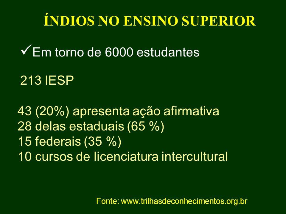 ÍNDIOS NO ENSINO SUPERIOR 213 IESP 43 (20%) apresenta ação afirmativa 28 delas estaduais (65 %) 15 federais (35 %) 10 cursos de licenciatura intercult