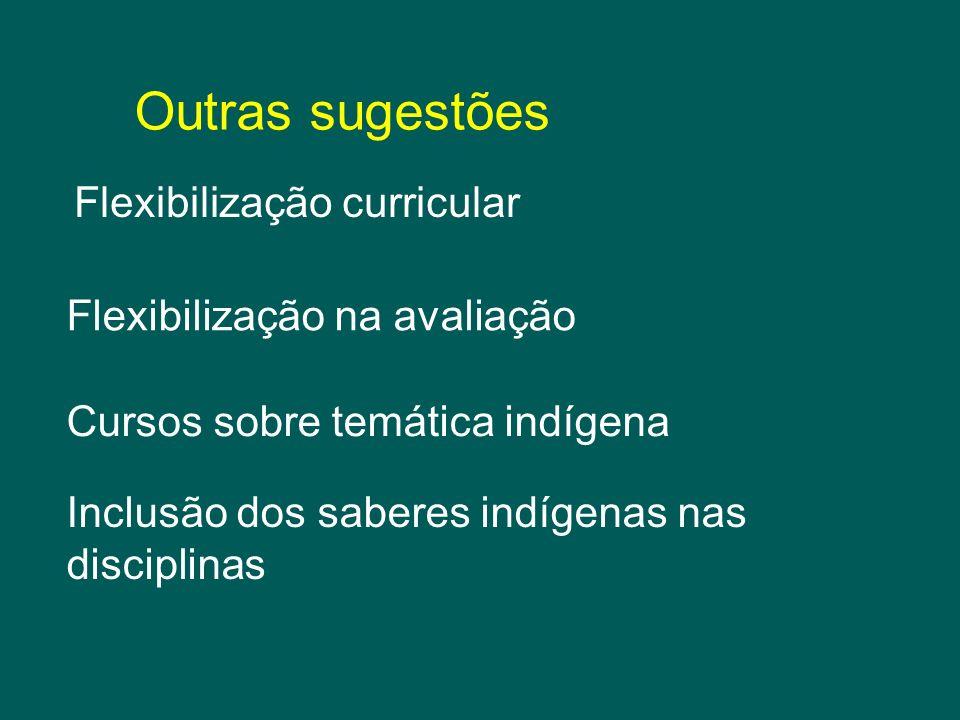 Flexibilização curricular Outras sugestões Flexibilização na avaliação Cursos sobre temática indígena Inclusão dos saberes indígenas nas disciplinas