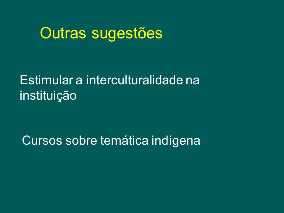 Outras sugestões Estimular a interculturalidade na instituição Cursos sobre temática indígena