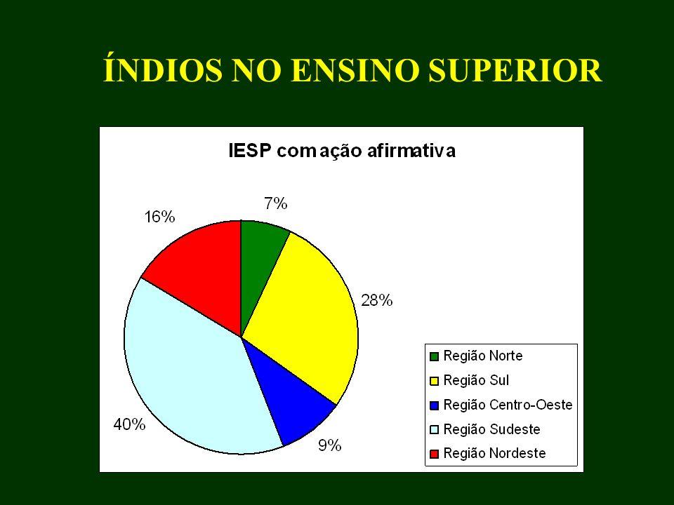 a) A interculturalização das instituições de ensino superior existentes no Brasil (no sentido de investir em diversidade ) b) Criar novas instituições de ensino superior, de tipo intercultural (como exemplo o caso das universidades interculturais mexicanas) Uma discussão atual
