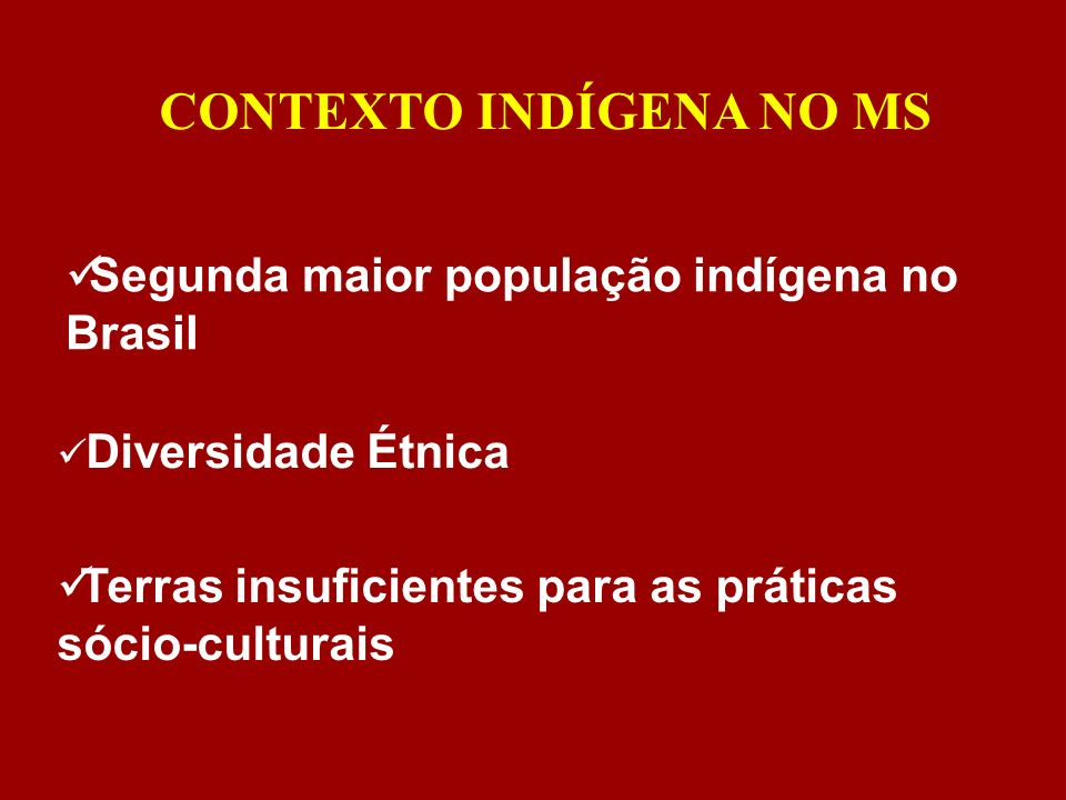 CONTEXTO INDÍGENA NO MS Diversidade Étnica Segunda maior população indígena no Brasil Terras insuficientes para as práticas sócio-culturais