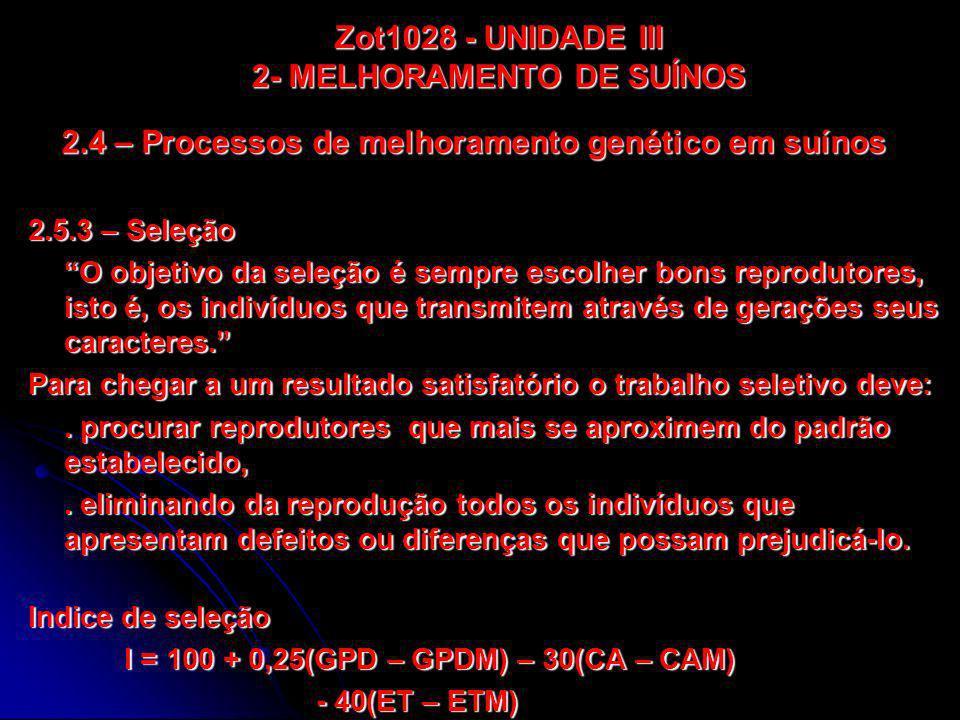 2.4 – Processos de melhoramento genético em suínos 2.5.3 – Seleção O objetivo da seleção é sempre escolher bons reprodutores, isto é, os indivíduos qu
