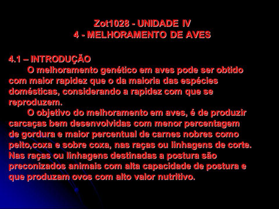 Zot1028 - UNIDADE IV 4 - MELHORAMENTO DE AVES No caso das aves de corte, as demandas dos clientes tenderão a variar.