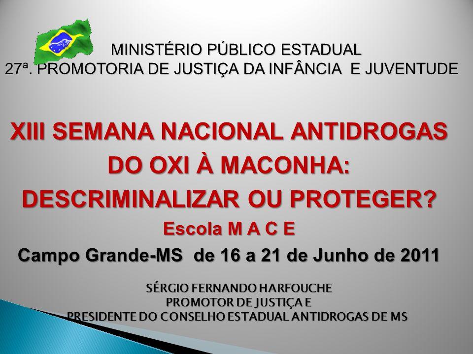 MINISTÉRIO PÚBLICO ESTADUAL 27ª. PROMOTORIA DE JUSTIÇA DA INFÂNCIA E JUVENTUDE SÉRGIO FERNANDO HARFOUCHE PROMOTOR DE JUSTIÇA E PRESIDENTE DO CONSELHO