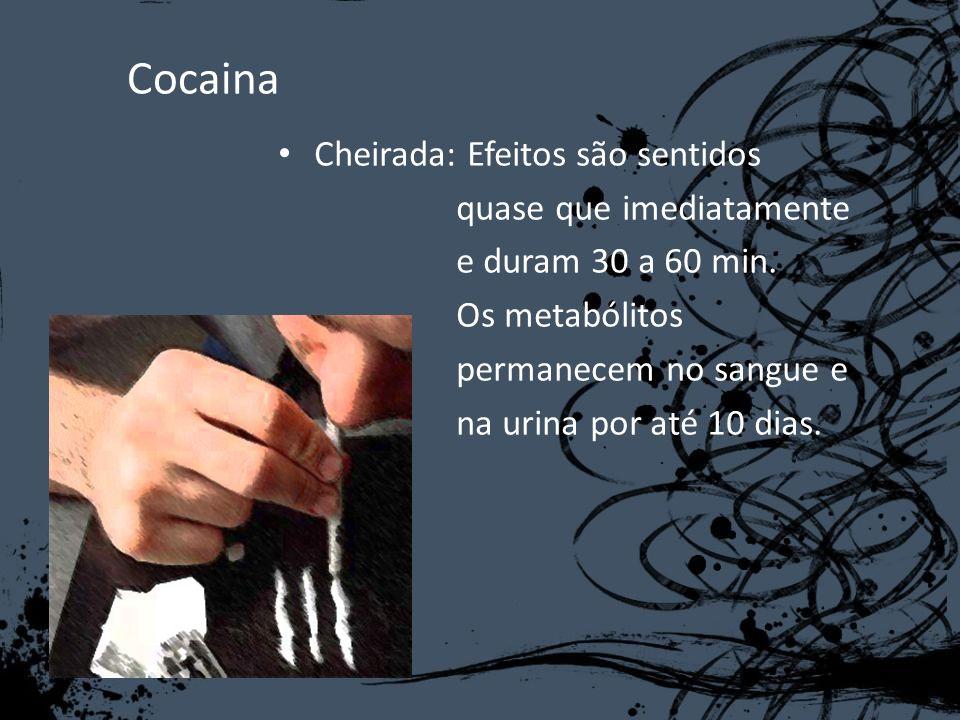 Cocaina Cheirada: Efeitos são sentidos quase que imediatamente e duram 30 a 60 min. Os metabólitos permanecem no sangue e na urina por até 10 dias.