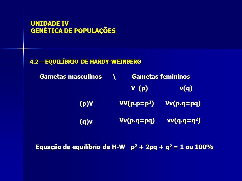 UNIDADE IV GENÉTICA DE POPULAÇÕES V (p) v(q) (p)V(q)v VV(p.p=p 2 ) Vv(p.q=pq) Vv(p.q=pq) Vv(p.q=pq) vv(q.q=q 2 ) Equação de equilíbrio de H-W p 2 + 2pq + q 2 = 1 ou 100% 4.2 – EQUILÍBRIO DE HARDY-WEINBERG Gametas masculinos \ Gametas femininos