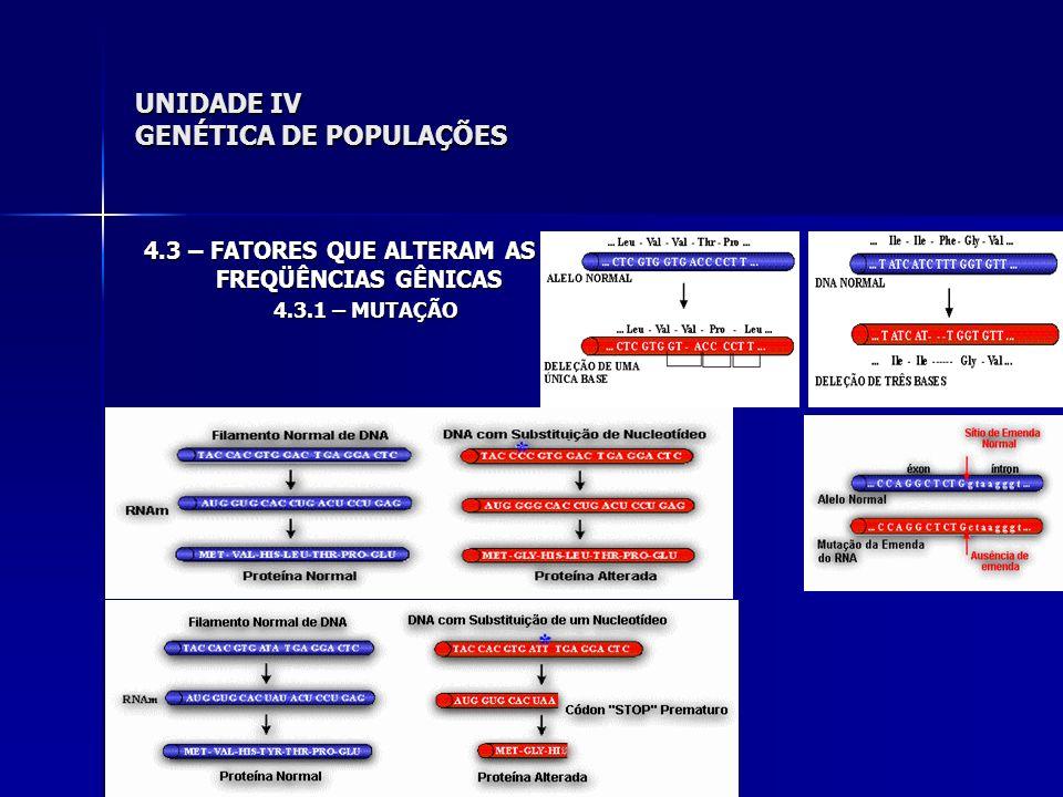 UNIDADE IV GENÉTICA DE POPULAÇÕES 4.3 – FATORES QUE ALTERAM AS FREQÜÊNCIAS GÊNICAS 4.3.1 – MUTAÇÃO