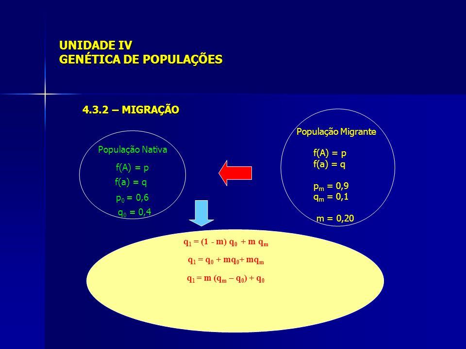 UNIDADE IV GENÉTICA DE POPULAÇÕES 4.3.2 – MIGRAÇÃO População Nativa f(A) = p f(a) = q p 0 = 0,6 q 0 = 0,4 População Migrante f(A) = p f(a) = q p m = 0,9 q m = 0,1 m = 0,20 q 1 = (1 - m) q 0 + m q m q 1 = q 0 + mq 0 + mq m q 1 = m (q m – q 0 ) + q 0