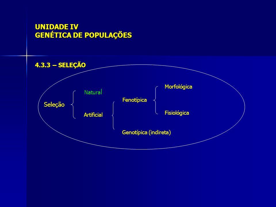 UNIDADE IV GENÉTICA DE POPULAÇÕES 4.3.3 – SELEÇÃO Seleção Natura l Artificial Fenotípica Genotípica (indireta) Morfológica Fisiológica