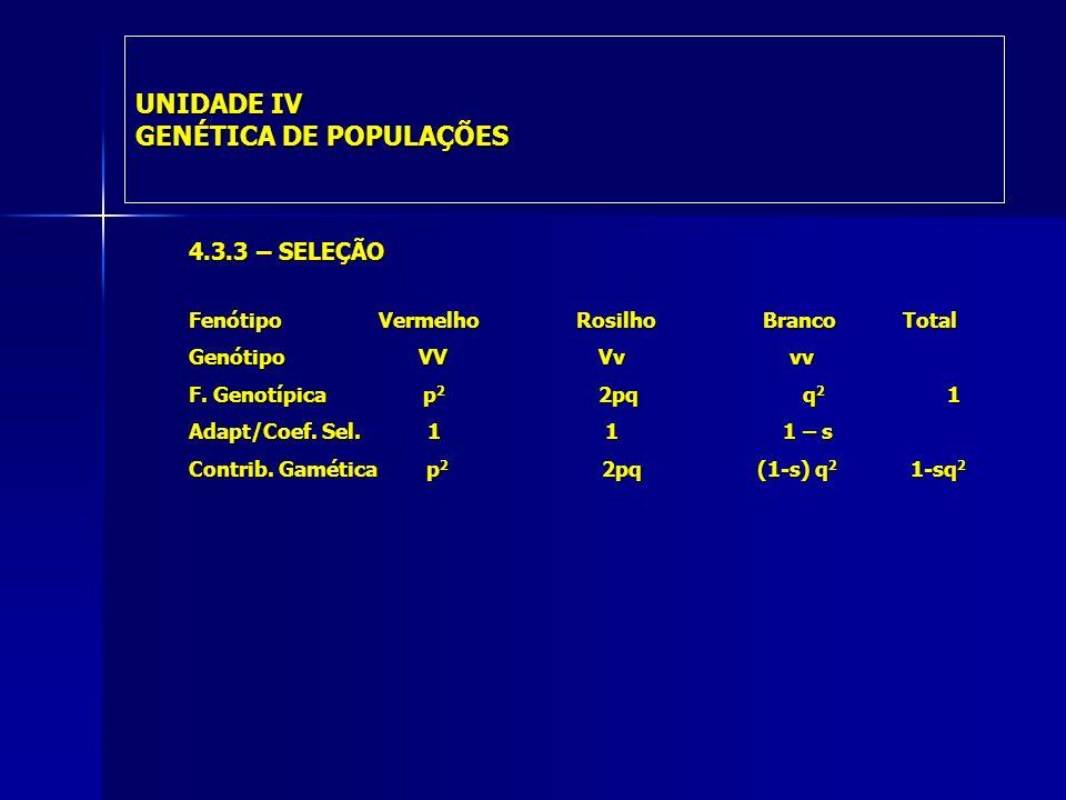 UNIDADE IV GENÉTICA DE POPULAÇÕES 4.3.3 – SELEÇÃO Fenótipo Vermelho Rosilho Branco Total Genótipo VV Vv vv F.