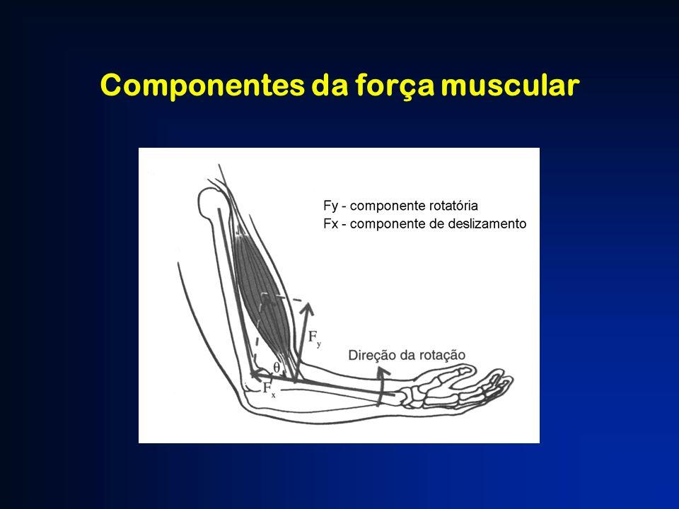Componentes da força muscular
