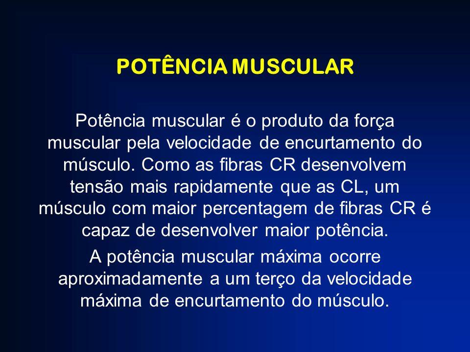 POTÊNCIA MUSCULAR Potência muscular é o produto da força muscular pela velocidade de encurtamento do músculo. Como as fibras CR desenvolvem tensão mai