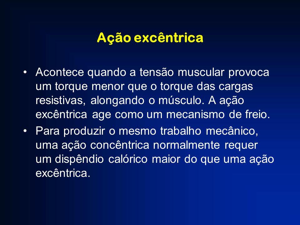 Ação excêntrica Acontece quando a tensão muscular provoca um torque menor que o torque das cargas resistivas, alongando o músculo. A ação excêntrica a