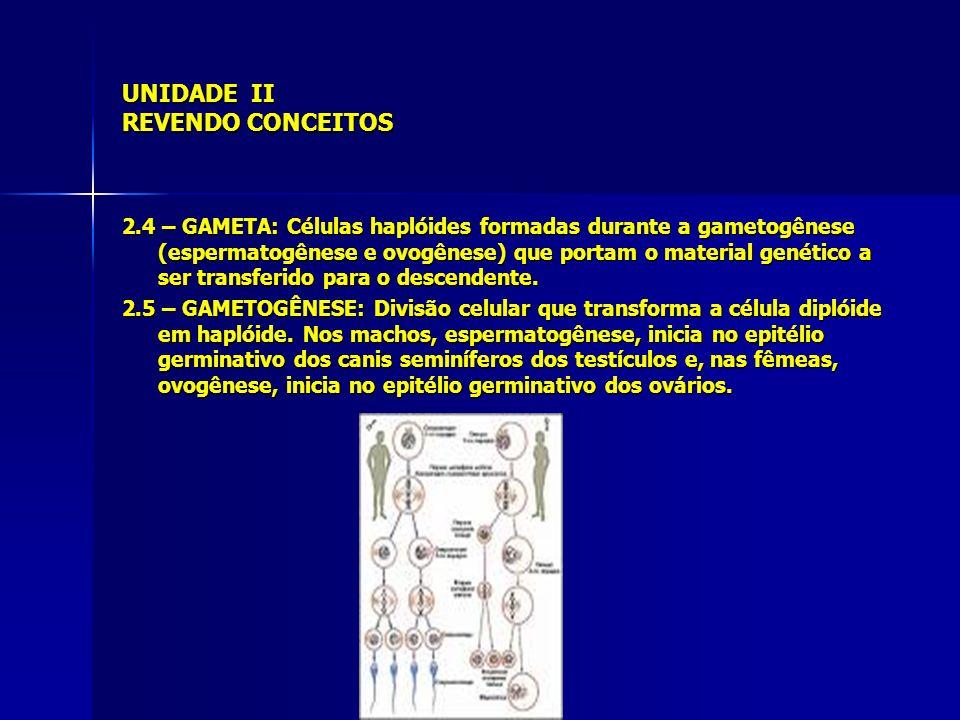 UNIDADE II REVENDO CONCEITOS 2.4 – GAMETA: Células haplóides formadas durante a gametogênese (espermatogênese e ovogênese) que portam o material genét