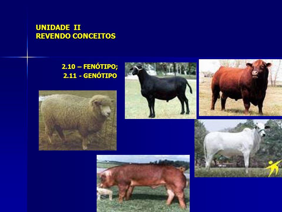 UNIDADE II REVENDO CONCEITOS 2.10 – FENÓTIPO; 2.11 - GENÓTIPO