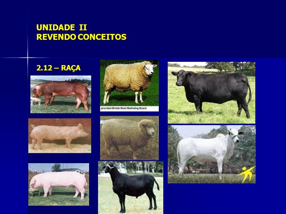 UNIDADE II REVENDO CONCEITOS 2.13 – POPULAÇÃO;