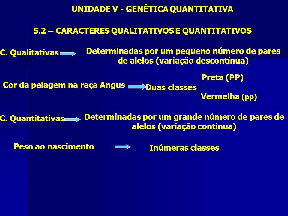 UNIDADE V - GENÉTICA QUANTITATIVA 5.2 – CARACTERES QUALITATIVOS E QUANTITATIVOS C. Qualitativas Determinadas por um pequeno número de pares de alelos