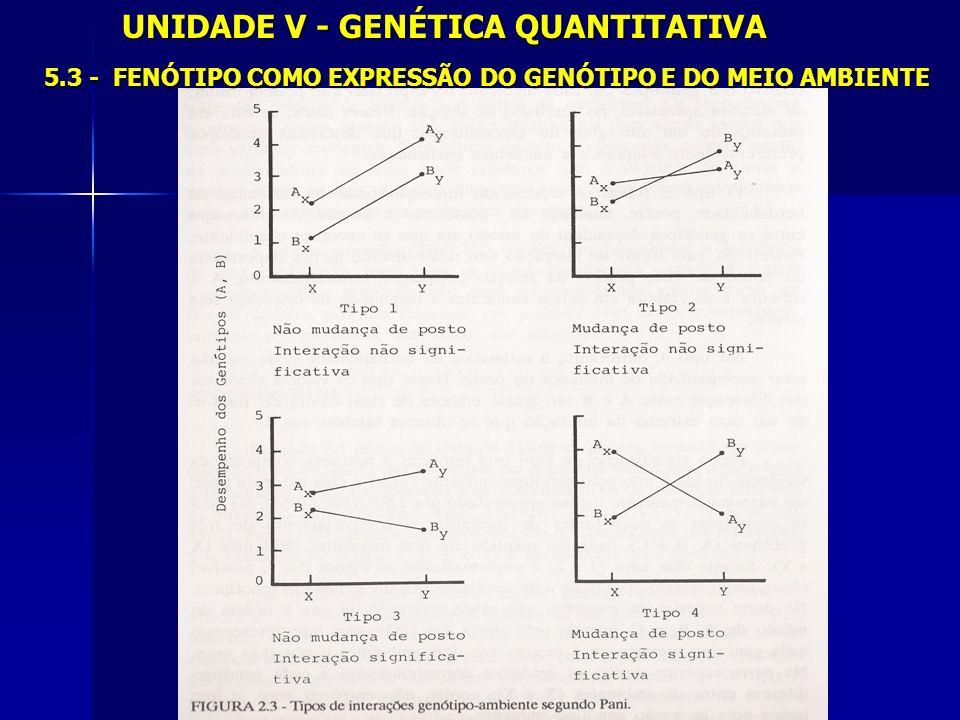 UNIDADE V - GENÉTICA QUANTITATIVA 5.3 - FENÓTIPO COMO EXPRESSÃO DO GENÓTIPO E DO MEIO AMBIENTE