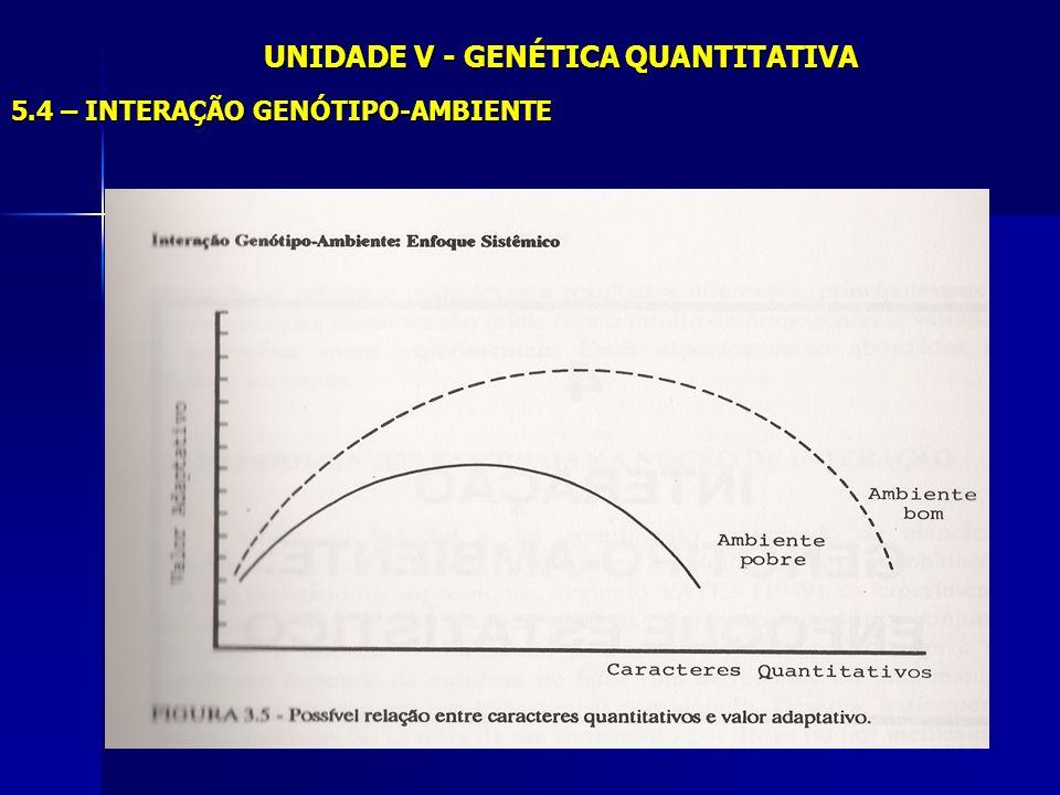 UNIDADE V - GENÉTICA QUANTITATIVA 5.4 – INTERAÇÃO GENÓTIPO-AMBIENTE