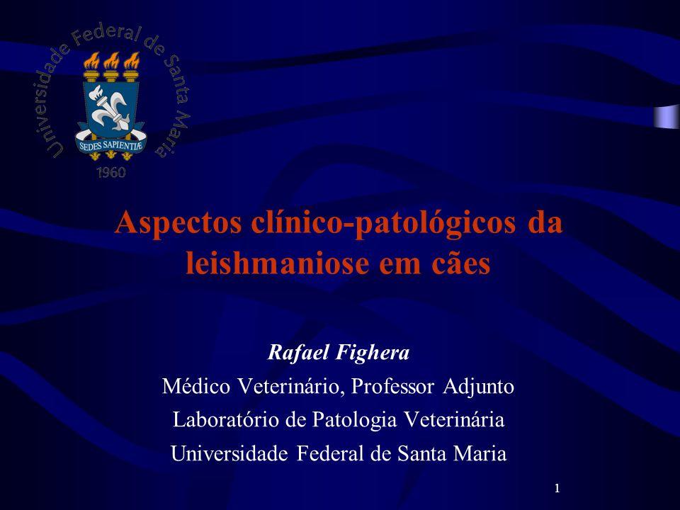 1 Aspectos clínico-patológicos da leishmaniose em cães Rafael Fighera Médico Veterinário, Professor Adjunto Laboratório de Patologia Veterinária Unive