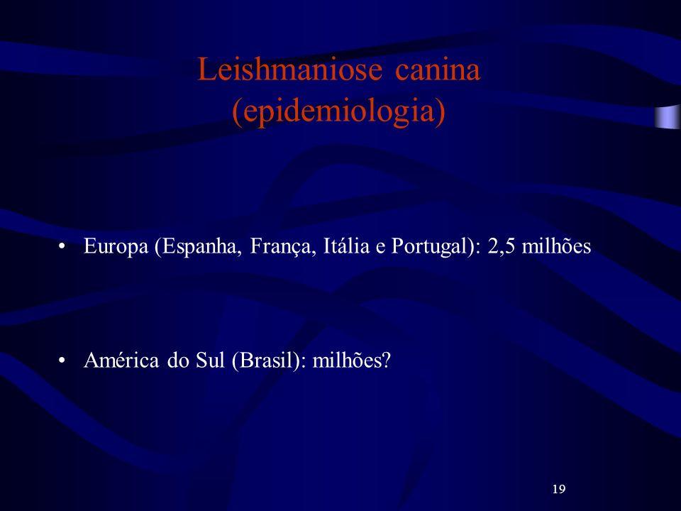 19 Leishmaniose canina (epidemiologia) Europa (Espanha, França, Itália e Portugal): 2,5 milhões América do Sul (Brasil): milhões?