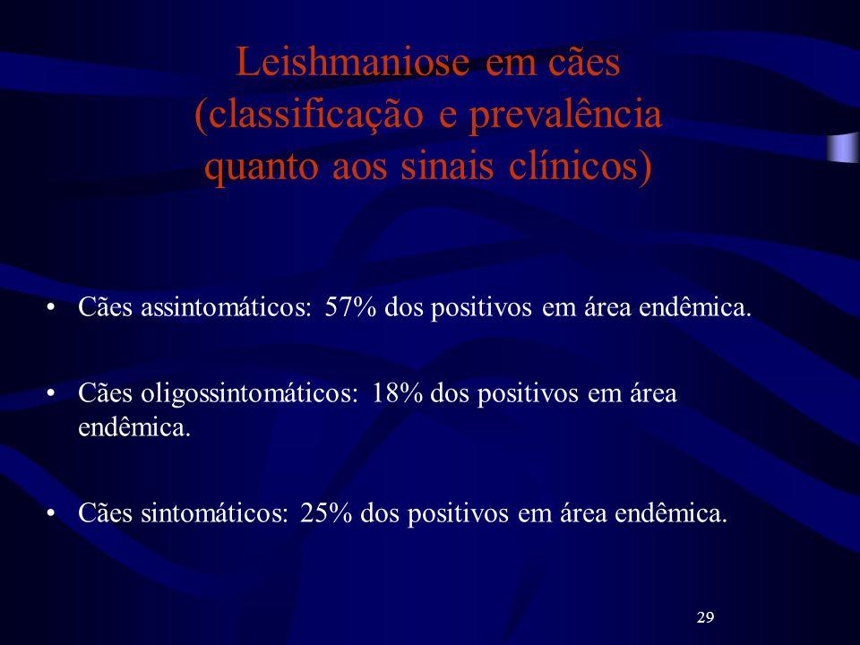 29 Leishmaniose em cães (classificação e prevalência quanto aos sinais clínicos) Cães assintomáticos: 57% dos positivos em área endêmica. Cães oligoss