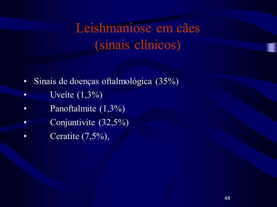 48 Leishmaniose em cães (sinais clínicos) Sinais de doenças oftalmológica (35%) Uveíte (1,3%) Panoftalmite (1,3%) Conjuntivite (32,5%) Ceratite (7,5%)