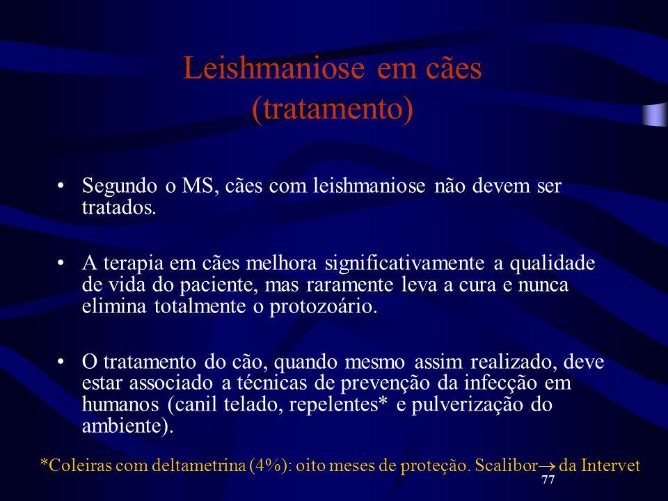 77 Leishmaniose em cães (tratamento) Segundo o MS, cães com leishmaniose não devem ser tratados. A terapia em cães melhora significativamente a qualid