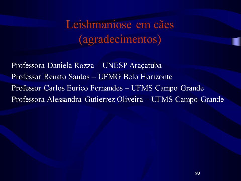 93 Leishmaniose em cães (agradecimentos) Professora Daniela Rozza – UNESP Araçatuba Professor Renato Santos – UFMG Belo Horizonte Professor Carlos Eur