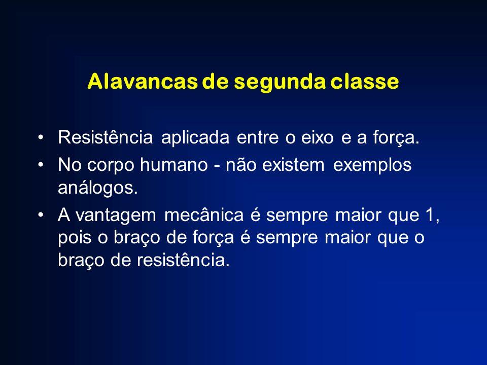 Alavancas de segunda classe Resistência aplicada entre o eixo e a força. No corpo humano - não existem exemplos análogos. A vantagem mecânica é sempre