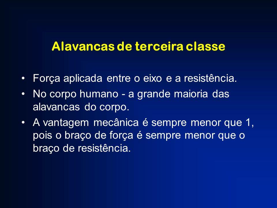 Alavancas de terceira classe Força aplicada entre o eixo e a resistência. No corpo humano - a grande maioria das alavancas do corpo. A vantagem mecâni
