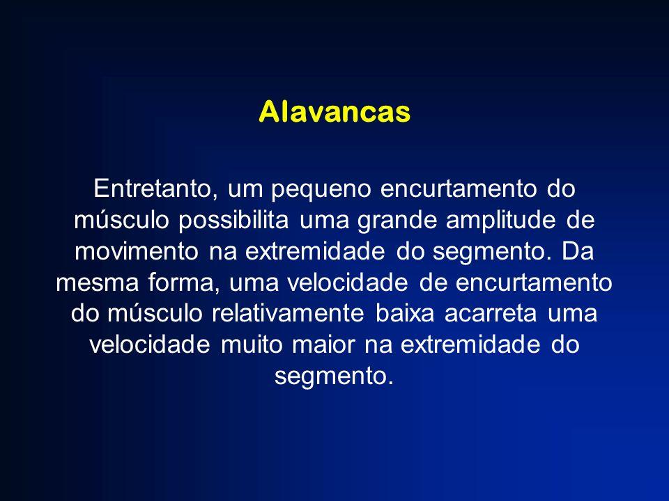 Alavancas Entretanto, um pequeno encurtamento do músculo possibilita uma grande amplitude de movimento na extremidade do segmento. Da mesma forma, uma