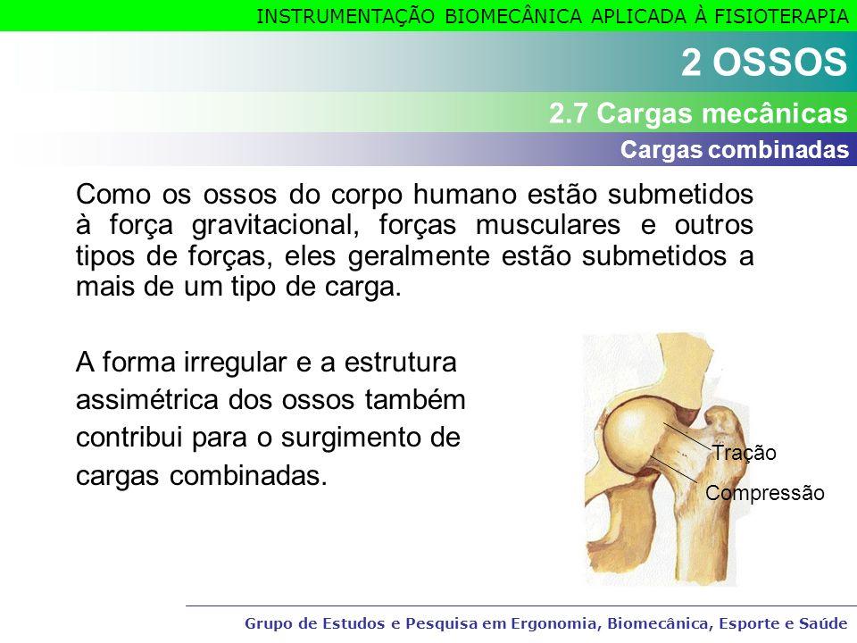 Grupo de Estudos e Pesquisa em Ergonomia, Biomecânica, Esporte e Saúde INSTRUMENTAÇÃO BIOMECÂNICA APLICADA À FISIOTERAPIA Como os ossos do corpo human