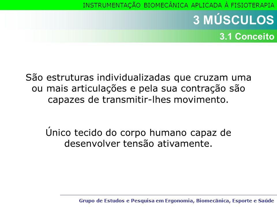 Grupo de Estudos e Pesquisa em Ergonomia, Biomecânica, Esporte e Saúde INSTRUMENTAÇÃO BIOMECÂNICA APLICADA À FISIOTERAPIA São estruturas individualiza